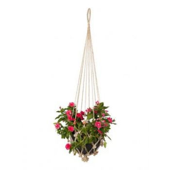 Sika with Rust Red Beads (set of 4) Plant Hanger & Pot Holder