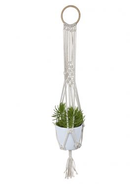 Ivy Plant Hanger & Pot Holder
